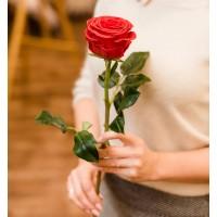 Роза из холодного фарфора
